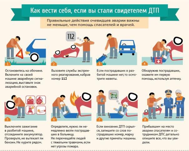 инфографика дтп